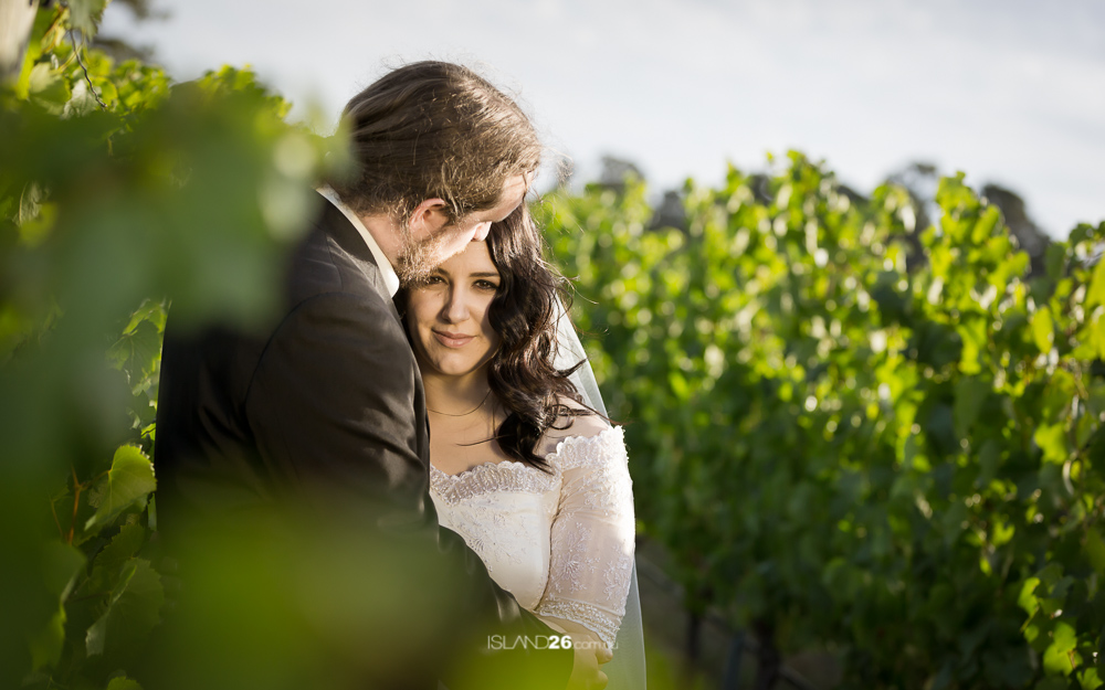 Hobart Wedding Photographer | Frogmore Creek Winery